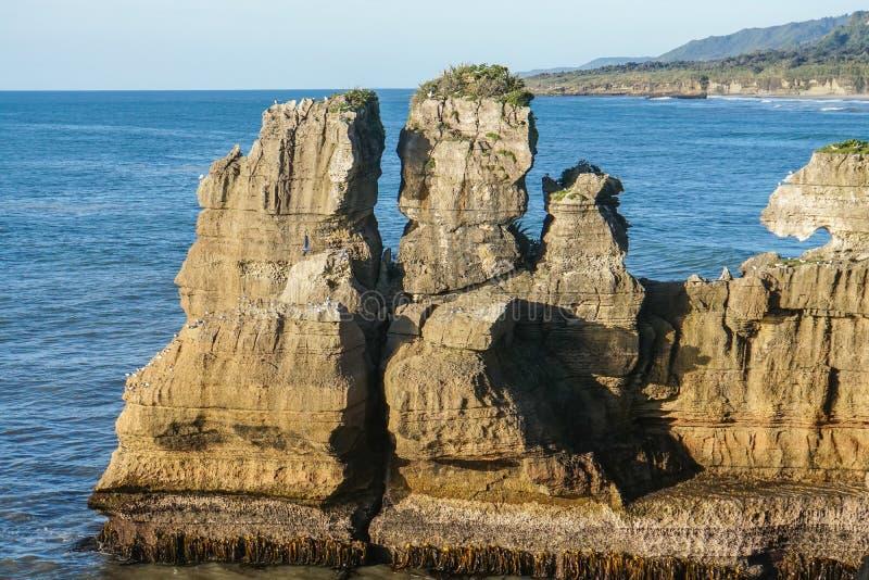 As pedras na panqueca balançam com o mar azul profundo no dia ensolarado em Nova Zelândia imagens de stock royalty free