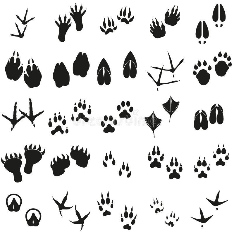 As pegadas animais dos pássaros e dos mamíferos das silhuetas ajustaram ícones do vetor ilustração royalty free
