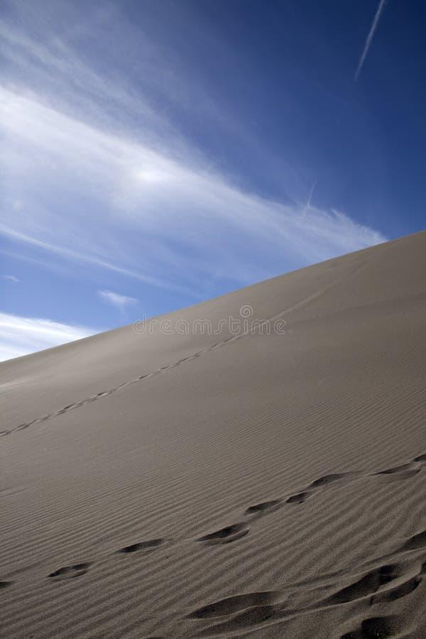 As pegadas levantam a duna fotos de stock royalty free