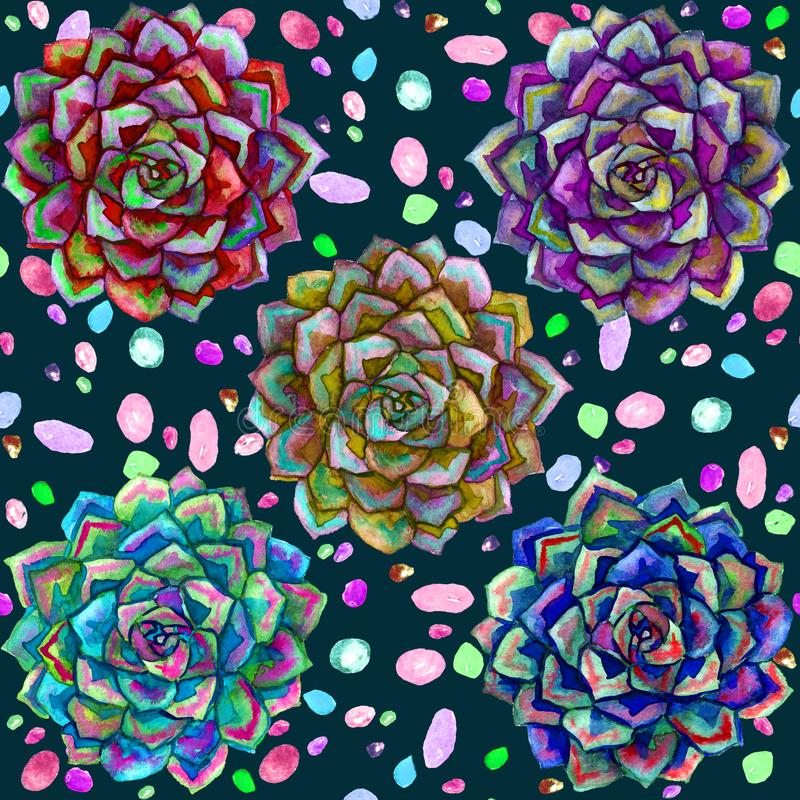 As plantas coloridas suculentos e o teste padrão sem emenda colorido da opinião superior das pedras projetam na obscuridade - fun ilustração stock