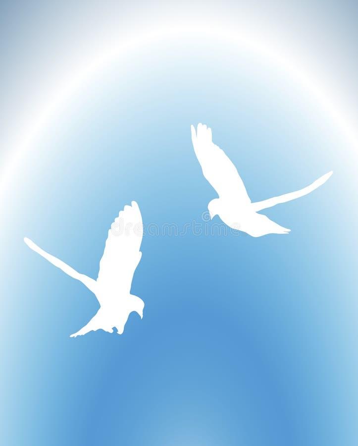As pombas voam ilustração do vetor