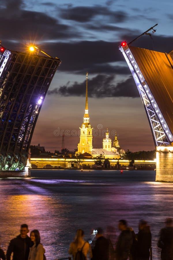 As pontes famosas de St Petersburg imagem de stock royalty free