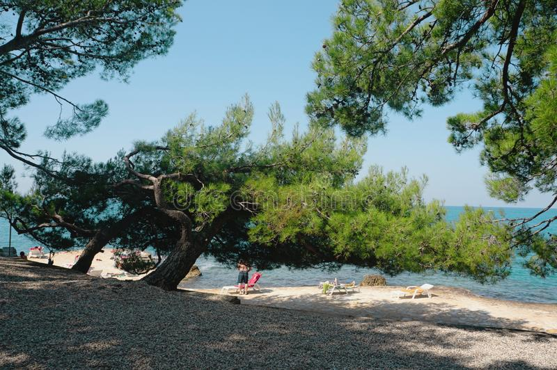 As praias as mais limpas no mundo A praia de Paradise ? uma praia ensolarada calma no litoral A paisagem sazonal da Cro?cia fotografia de stock