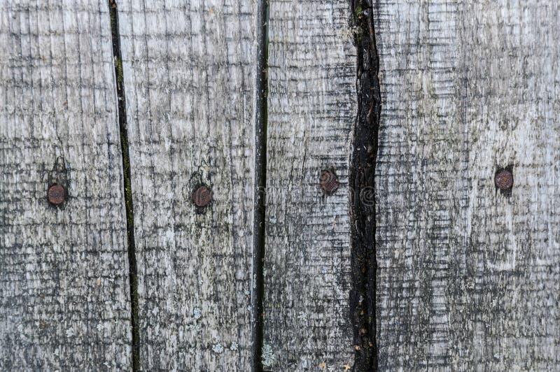As pranchas de madeira envelhecidas do close up de superfície texture o contexto do fundo imagens de stock
