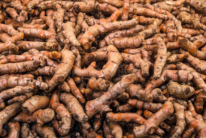 As raizes de cúrcuma fecham-se acima da exposição no mercado do legume fresco imagens de stock royalty free