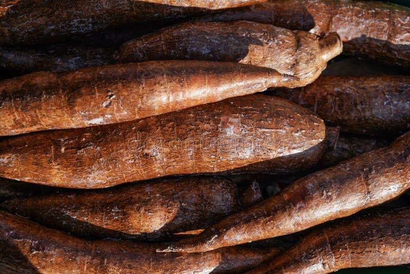 As raizes esculenta do Manihot de Yuca/Macaxeira indicadas no mercado do alimento em Londres, sol brilham sobre fotos de stock