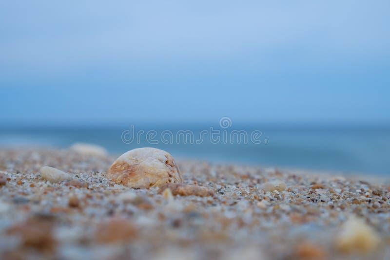 As rochas coloridas e os shell esmagados lavam acima em uma praia do jérsei em d imagens de stock