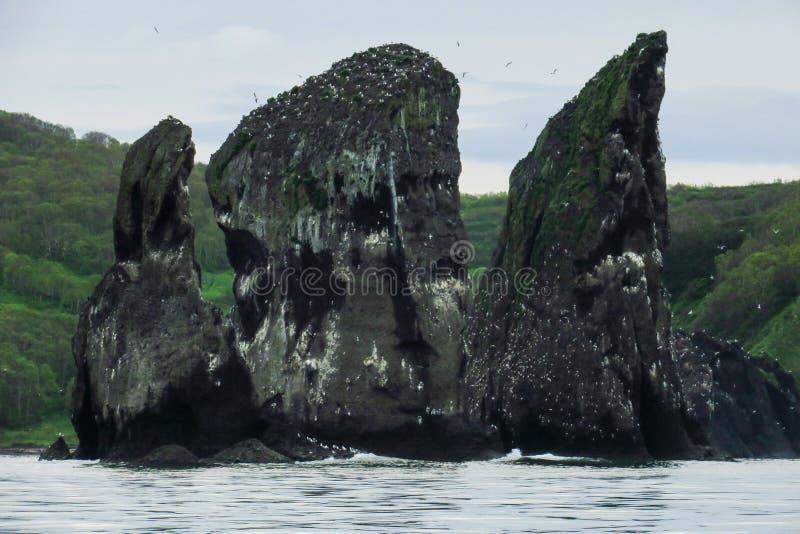 As rochas são nomeadas 'três irmãos ', perto da costa do Oceano Pacífico imagens de stock