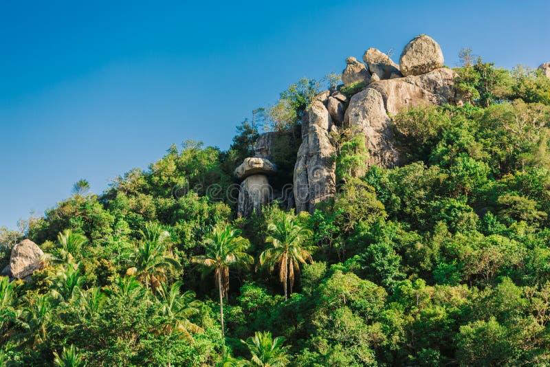 As rochas tropicais da floresta e do granito na ilha Paradise Vegetação luxúria Céu azul Cloudless Palma de coco fotografia de stock royalty free