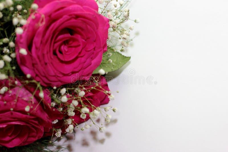 As rosas bonitas formaram em um ramalhete bonito fotografia de stock