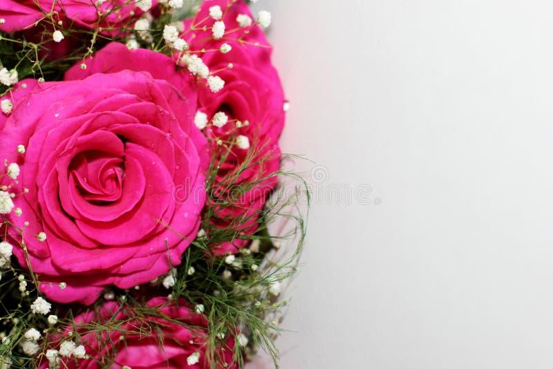 As rosas bonitas formaram em um ramalhete bonito fotos de stock