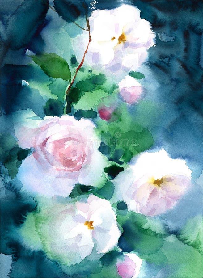 As rosas brancas na aquarela escura do fundo florescem a ilustração pintado à mão floral do cartão ilustração do vetor