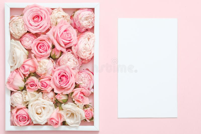 As rosas do modelo do cartão saltam felicitações fotos de stock