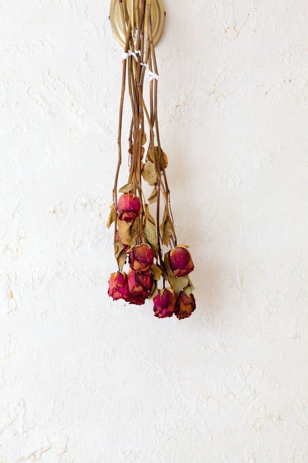 As rosas vermelhas secadas florescem o espaço vazio da cópia do quadro na parede branca imagem de stock royalty free