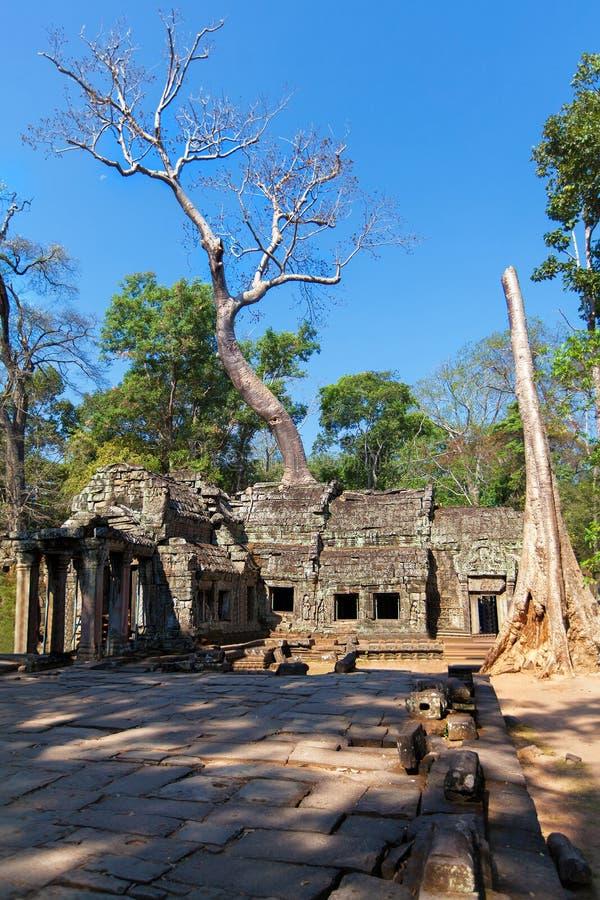 As ruínas antigas de um templo histórico do Khmer no compl do templo imagem de stock
