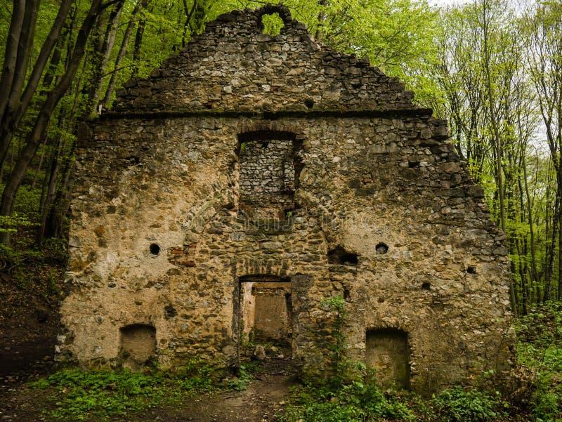 As ruínas da casa na floresta, as paredes da construção velha fotos de stock