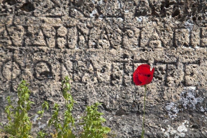 As ruínas da cidade antiga de Hierapolis na mola, Turquia imagens de stock royalty free