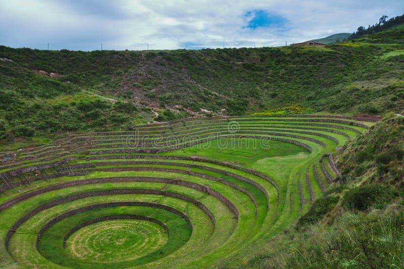 As ruínas de Moray Inca, Peru fotografia de stock royalty free