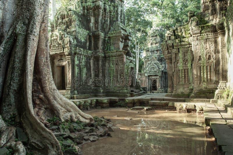 As ruínas do templo do baile de finalistas de Ta fotografia de stock