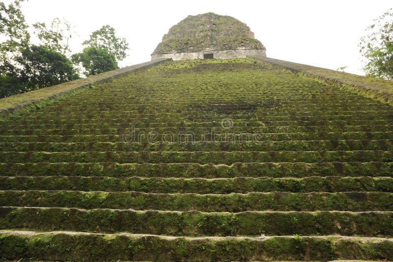 As ruínas maias de Tikal imagens de stock