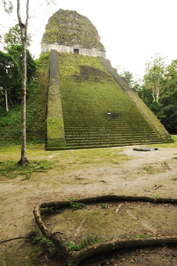 As ruínas maias de Tikal fotografia de stock