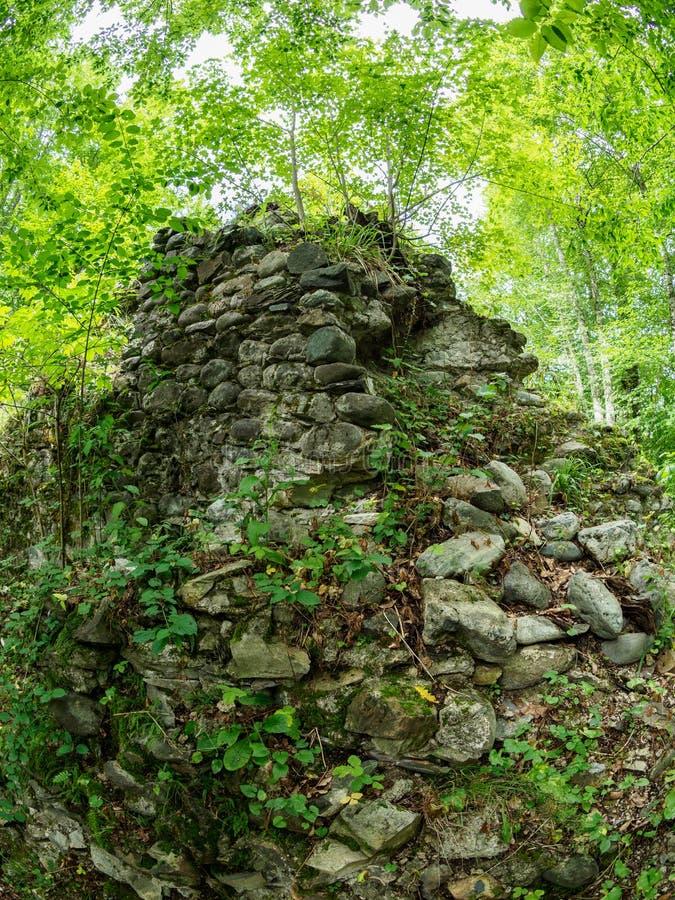 As ru?nas de uma fortaleza de pedra antiga em uma floresta verde densa fotografia de stock royalty free
