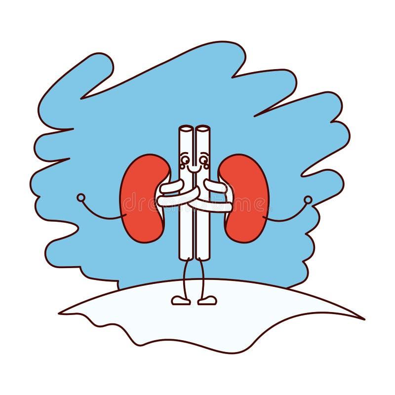 As seções da cor mostram em silhueta a cena na grama com sistema renal da caricatura da silhueta de corpo humano ilustração stock