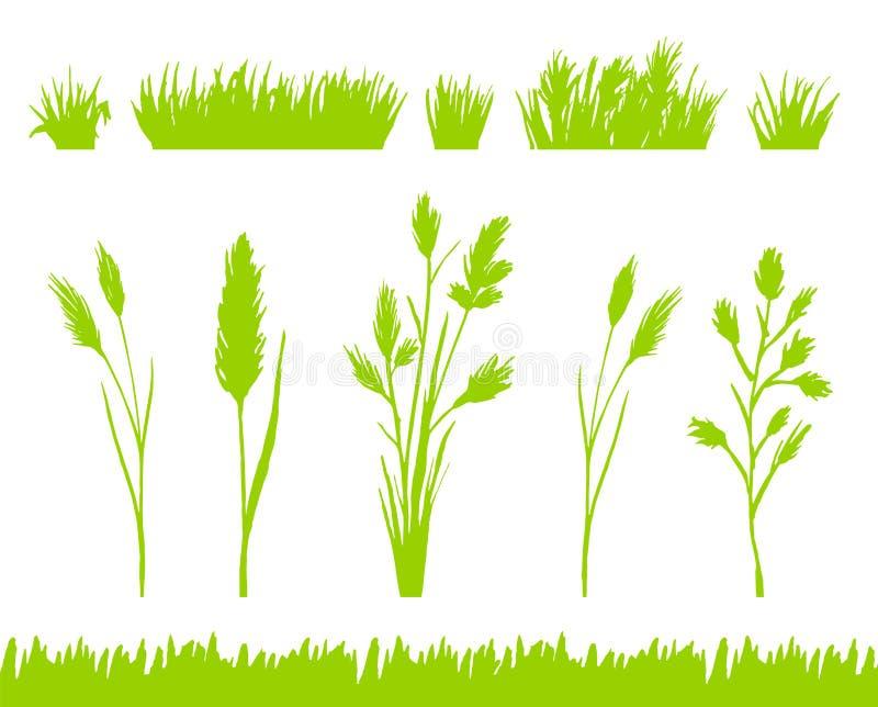 As silhuetas da grama verde ajustaram-se isolado no vetor branco do fundo ilustração stock