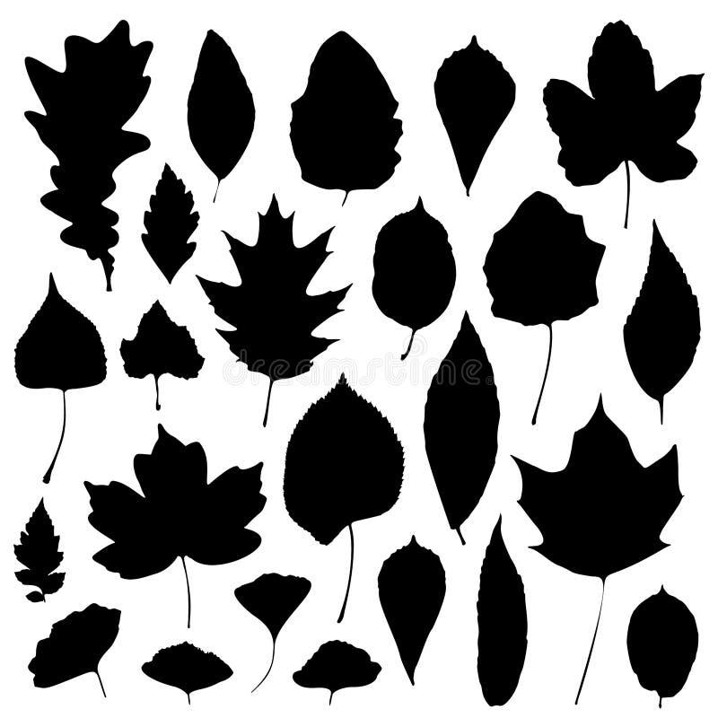 As silhuetas das folhas ajustaram-se isolado no fundo branco Ilustra??o do vetor foto de stock