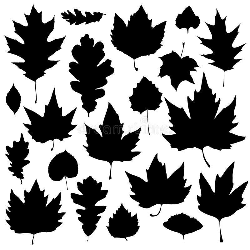 As silhuetas das folhas ajustaram-se isolado no fundo branco Ilustra??o do vetor imagem de stock royalty free