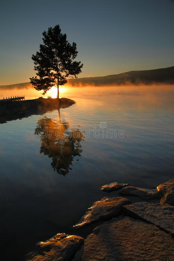 Witness To The Dawn. As the sun rises over the distant bluff, it silhouettes a lone tree and sets the rising mists aglow royalty free stock image