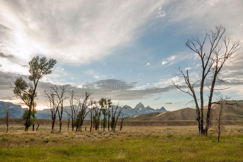 Dramatic skies as sun sets over Grand Tetons. As sun sets behind the Grand Tetons of Wyoming, it brightens a partly cloudy sky while trees in the foreground stock photography
