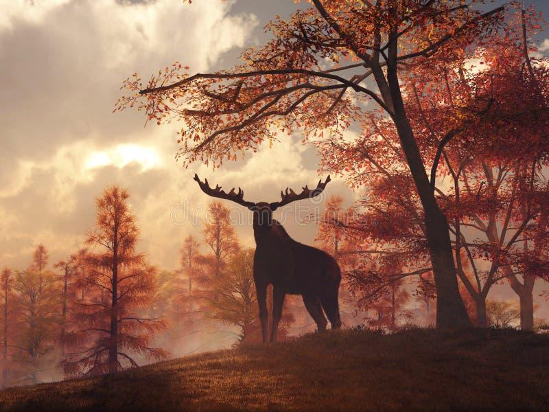 Moose in Autumn stock illustration