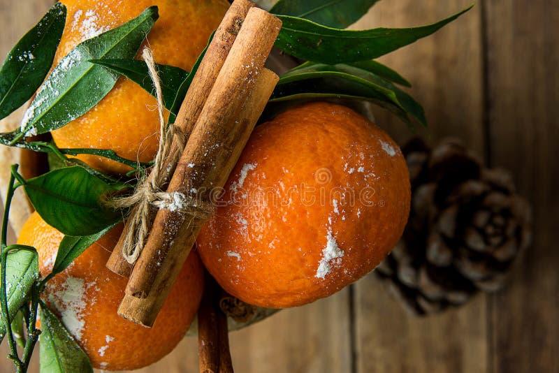 As tangerinas alaranjadas vibrantes no verde dos ramos deixam varas de canela amarradas com o fundo da madeira do cone do pinho d foto de stock