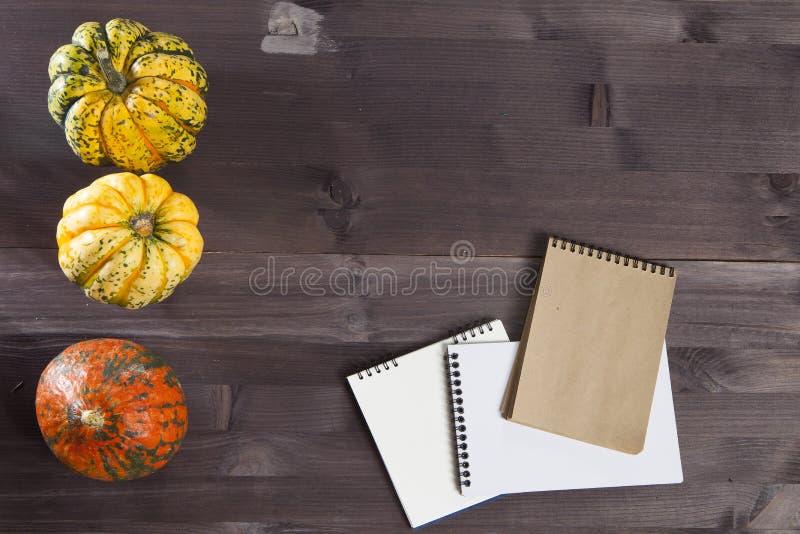 As três abóboras do camaleão com o bloco de notas na madeira escura foto de stock royalty free