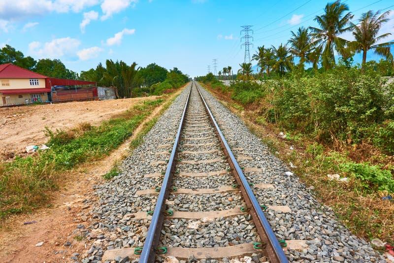 As trilhas do trem de estrada de ferro vão ao horizonte com palmeiras foto de stock royalty free