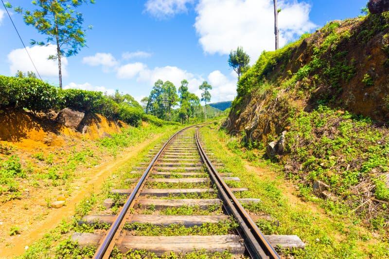As trilhas do trem do país do monte de Haputale centraram H fotografia de stock