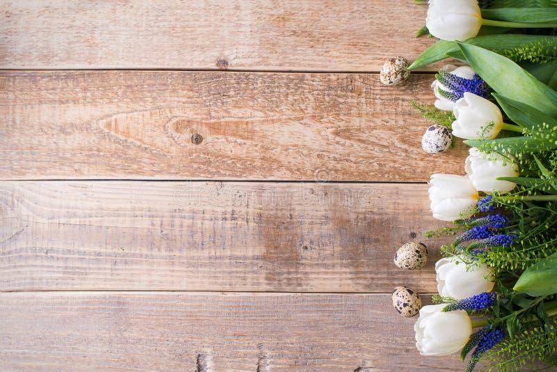 As tulipas brancas com os ovos no fundo de madeira, easter, saltam eles imagem de stock royalty free