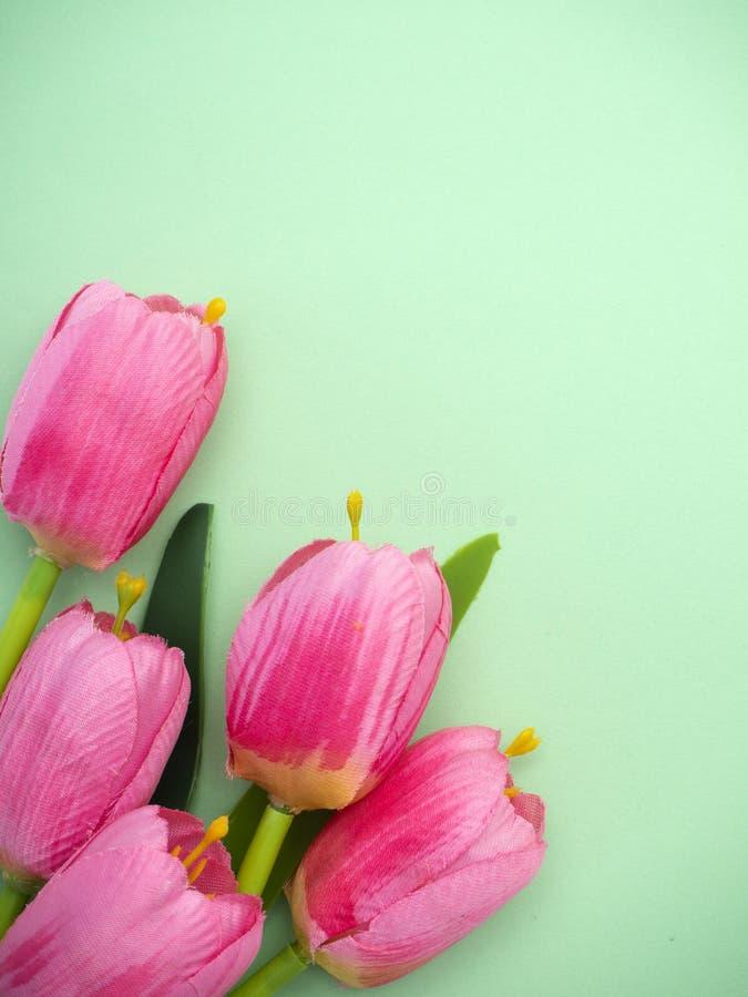 As tulipas cor-de-rosa esverdeiam o fundo do papel fotografia de stock royalty free