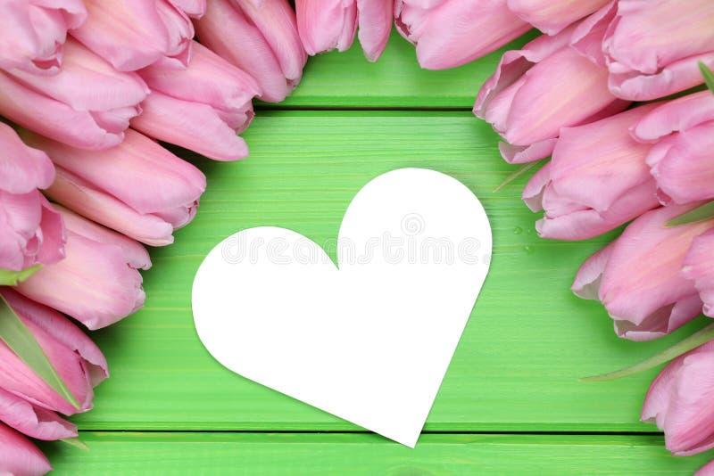 As tulipas florescem com amor do coração na mãe ou no dia de Valentim imagem de stock