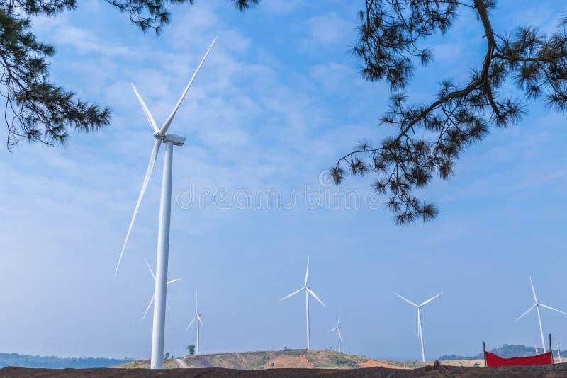 As turbinas eólicas que geram a eletricidade cultivam com o fundo da nuvem do céu azul e o pinho ramifica primeiro plano das folh fotos de stock