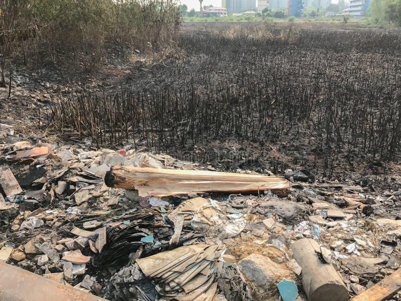 As van het branden van padievelden royalty-vrije stock foto