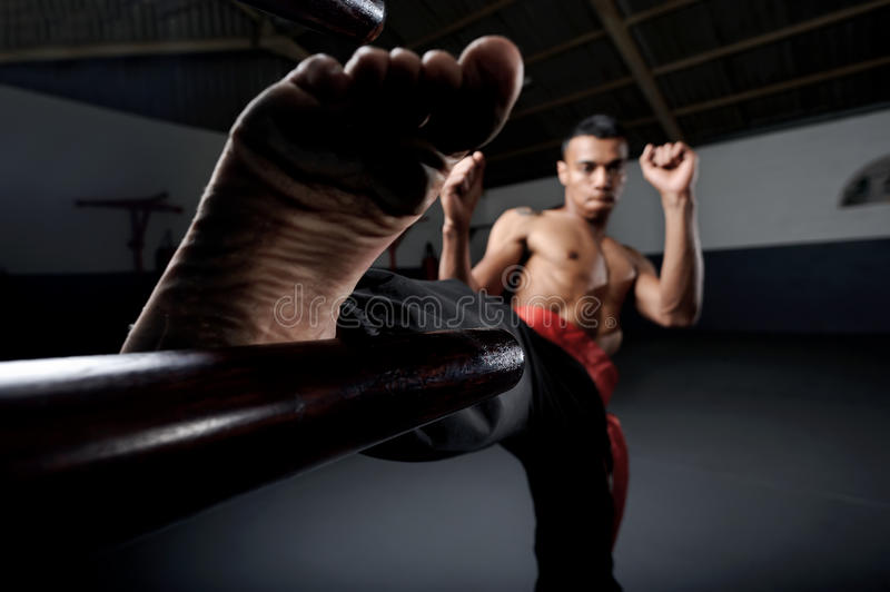 Asa Chun Kung Fu fotos de stock
