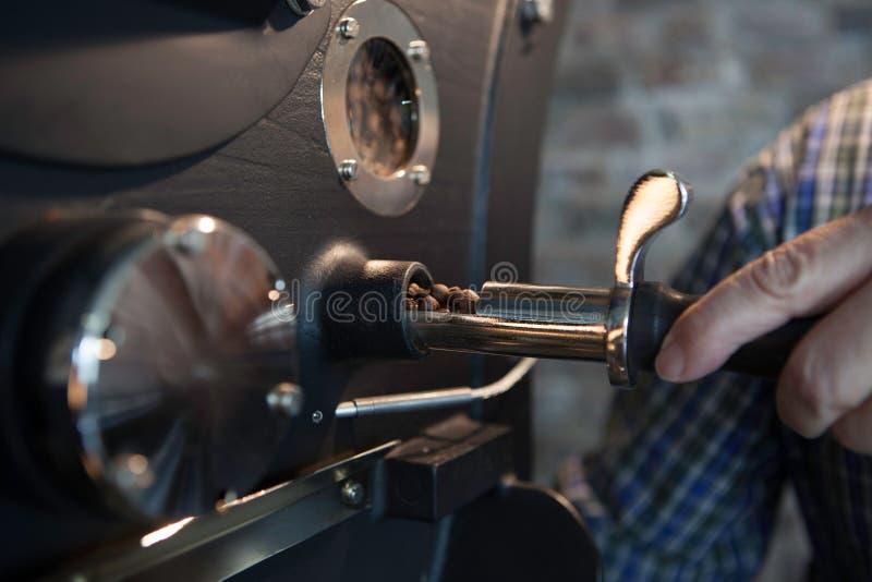 Asación de los granos de café - verificar proceso fotos de archivo libres de regalías