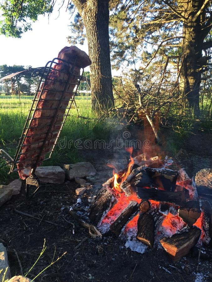 Asado de campo/assado do campo - pampas Argentina foto de stock royalty free