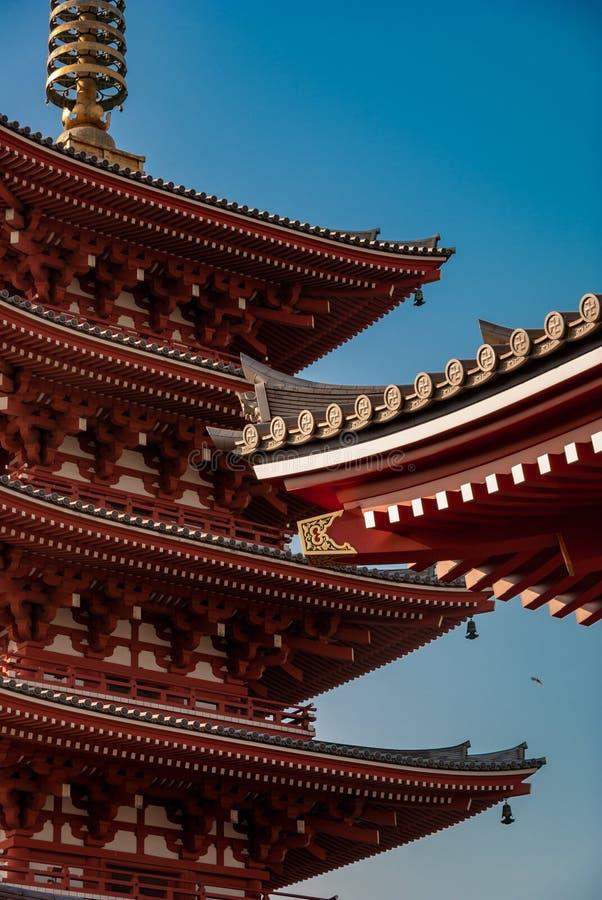 Asakusa świątyni dachu markizy szczegół z świtu lekki odbijać - obrazy royalty free