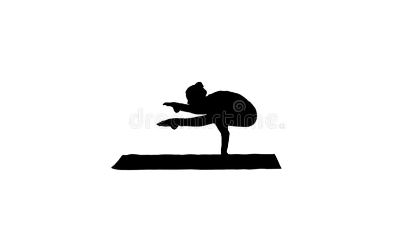 Asana hermoso Tittibhasana - actitud de la yoga de la posici?n del pino de las pr?cticas de la mujer de la silueta de la luci?rna stock de ilustración