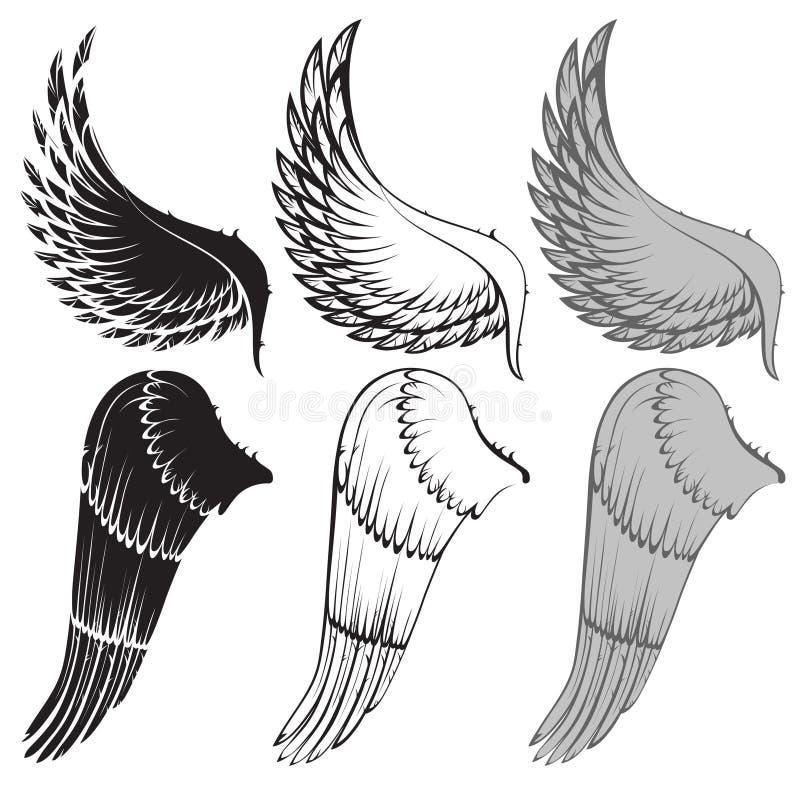 Asas ilustração royalty free