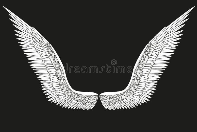 Asas brancas abertas do anjo do esboço Vetor ilustração royalty free
