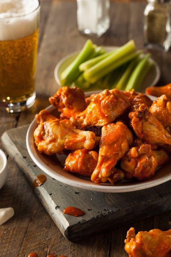 Asas de frango fritas caseiros picantes fotografia de stock